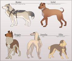 Canine Characters by Tazihound.deviantart.com on @deviantART