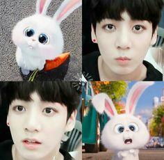 Its really cute omg.. Jungkook