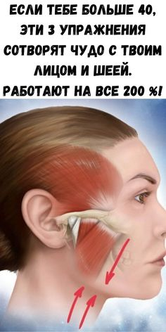 Up Hairstyles, Health Fitness, Make Up, Exercise, Face, Beauty, Acupressure Points, Health, Ejercicio