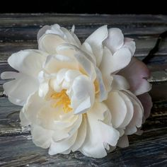 #floristics #bouquet #flowers #nature #beautiful #flower #flowerstagram #flowerslovers #floverstyles_gf #instagramanet #instaflowers http://gelinshop.com/ipost/1524608101172658013/?code=BUofv2EFD9d