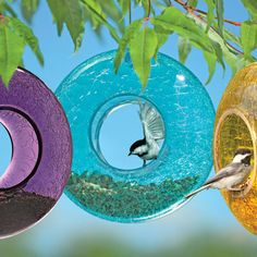 Moon Birdfeeder - Gets 4.5 Stars from hundreds of reviewers.