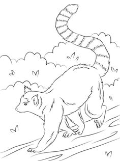 Cute Ring Tailed Lemur coloring page