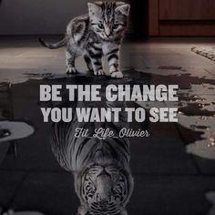 si tu es un tigre à l'intérieur .. Tu seras un tigre à l'extérieur ..
