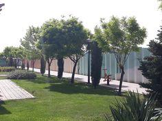 در بوستان مادر شهر محمدیه تکرار طرح کاشت در مسیرباعث ایجاد ریتم و تعادل شده و کاشت درخت خزان پذیر و همیشه سبز در کنار هم باعث حفظ جلوه در فصول مختلف می شود. Paths, Sidewalk, Landscape, Scenery, Side Walkway, Walkway, Corner Landscaping, Walkways, Pavement
