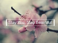 Say You, Stay Beautiful, -Joey Kidney (Created By Me)