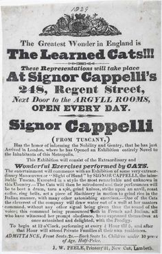 Handbill The Learned Cats | 1829