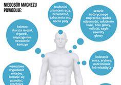 magnez_infografika_255.jpeg (255×180)