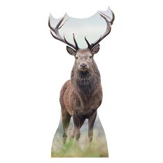 Image result for full size reindeer cut out
