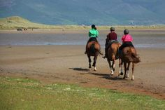 Two Hour Mountains & Beach Trek - Dingle Peninsula. Great Horse riding in Ireland. www.stable-mates.com