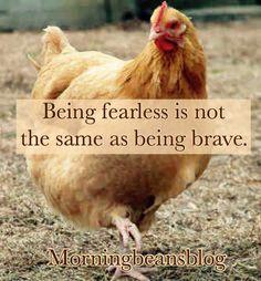 Brave Little Chicken