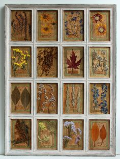Pressed Flowers, Herbarium, pressed flower art, 30x22 inches (75x56 cm) Pressed Plants, dried herbs frame, antique plant stand, rustic frame by PressedFlowerDecor on Etsy