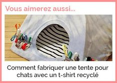Comment fabriquer une tente pour chats avec un t-shirt recyclé article teaser Animal Original, Make A Bed, Bed Ideas, Pet Beds, Cats, Accessories