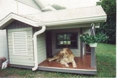 Outstanding dog house - outstanding dog too!