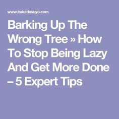 Barking Up The Wrong Tree » How To Stop Being Lazy And Get More Done – 5 Expert Tips