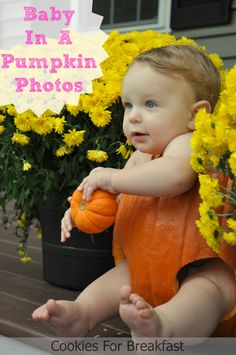 Cookies for Breakfast: Baby + Pumpkin = Photo Gold Newborn Pictures, Baby Photos, Family Photos, Newborn Pics, Pumpkin Photos, Halloween Photography, Photo Gold, Newborn Photography, Photography Ideas