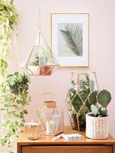 Pflanzen im Terrarium | Scandinavian Design Interior Living | #scandinavian #interior