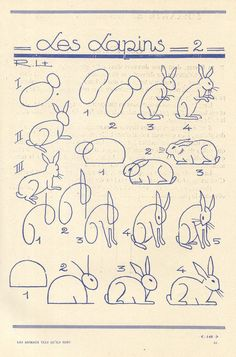 How to draw bunnies DIY