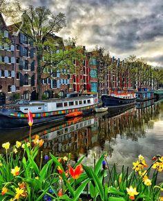Amsterdam -Netherlands