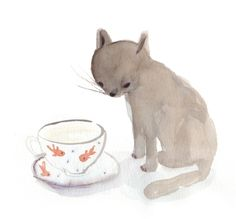 kitten whiskers and tea cups