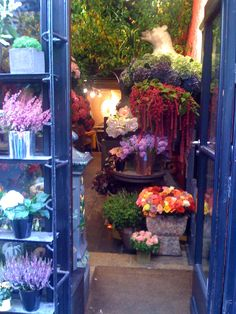 Blue flower shop.