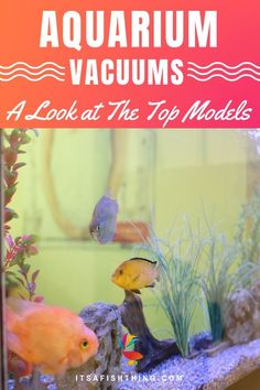 Pumps (water) Candid Aquarium Water Pump Cleaner Gravel Vacuum Fish Tank Siphon Pump For Changing