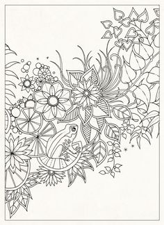 Secret Garden: 20 Postcards: Johanna Basford: 9781856699464: Amazon.com: Books