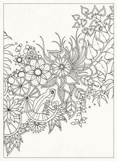 Amazon.fr - Secret Garden : 20 Postcards - Johanna Basford - Livres
