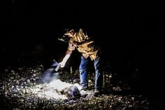 Larry Hromadka, a hunting guide, fires his pistol to end the suffering of a feral hog shot and wounded during a night boar hunt. Credit Daniel Berehulak for The New York Times