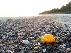 Farbklex am Strand von Dzwirzyno Polnische Ostsee
