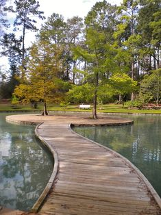 Trees in the middle of a lake and across a wooden bridge. Mercer Gardens Spring…
