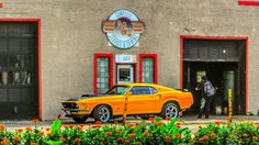 1969 Mustang - Cobra Jet - - 4 Speed in Transcona, Manitoba Mustang Cobra Jet, Mustang Fastback, Classic Mustang, Muscle Cars, Ford Mustangs, Trucks, Garage, Canada, Outdoors