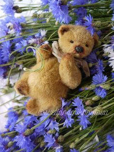 Teddy bear bears handmadebear