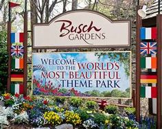 """It's true- Busch Gardens in Williamsburg, Virginia is the world's most beautiful theme park. Fun rides and attractions blend in with the natural scenic beauty of the forest and the James River. The park has an """"old country"""" European theme, and the food is amazing."""