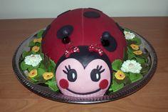 Ladybug cake Dort beruška