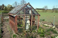 Mit einer simplen Holzkonstruktion kann man schnell ein Gewächshaus selber bauen http://gewaechshaus.com/
