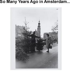 12-7-1946 - Traditional sale of Christmas trees on the Singel. In the background the Munttoren. Source: International Institute of Social History, Amsterdam.