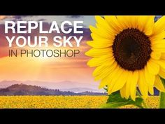 In photo compositions, replacing the sky is one of the more common tasks. This tutorial will show you three methods of doing so. Sky Photoshop, Learn Photoshop, Photoshop Tips, Photography Camera, Photoshop Photography, Photography Tips, Photography Training, Photoshop Elements Tutorials, Photo Tips