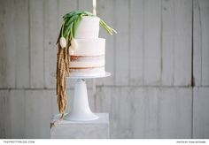 A Modern White Wedding Cake | Photography by Tasha Seccombe | Cake by The Birdcage