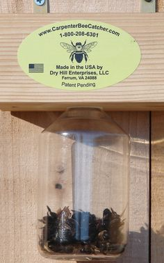 Home Made Bee Catcher Woodworking Guide, Custom Woodworking, Woodworking Projects Plans, Bug Control, Pest Control, Bee Catcher, Carpenter Bee Trap, Bee Traps, Wood Bees