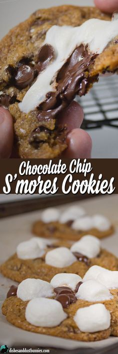Chocolate Chip S'mores Cookies from http://dishesanddustbunnies.com