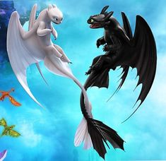 Toothless and Light Fury Dreamworks Dragons, Disney And Dreamworks, Cute Disney, Disney Art, Toothless Dragon, Hiccup And Astrid, Dragon Rider, Cute Dragons, Night Fury