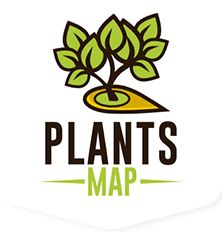 TracyBlevins.com » Blog Archive » We are planting a seed: Plants Map.  www.plantsmap.com