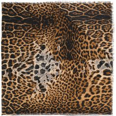 Saint Laurent leopard print scarf ($835) ❤ liked on Polyvore featuring accessories, scarves, brown, leopard scarves, logo scarves, yves saint laurent, leopard print shawl and brown scarves