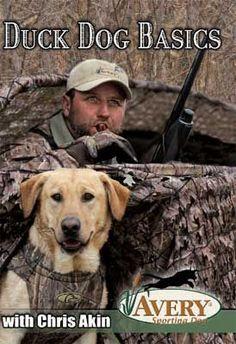 Avery Chris Akins Duck Dog Basics Hunting Dog Training Video at MacksPW.com