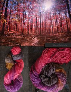 Terra Cotta Autumn Ombré hand dyed yarn, from Blue Brick
