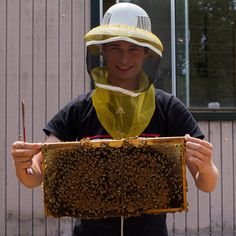 Learn what it takes to work as a bee keeper