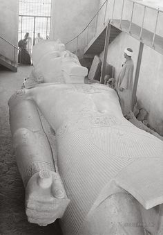 Colossal statue of Ramses II. Memphis, Egypt. 1920-1933 (This is SO much bigger in person than it looks in pictures)