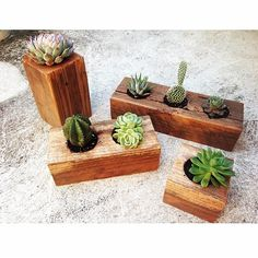 ♡͏͏ Electric Eyes Handmade Recycled Timber Planters ♡͏͏ In store @powerlinez and available to order info@electriceyes.com.au #succulents #cactus #recycled #timber #planters #homewares #handmade #interiors #exteriors #design #style #interiordesign #electriceyes