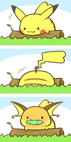 Pikachu, Raichu. This comic should be going backwards ♡ (by カフェ [kafe], Pixiv Id 3414789)