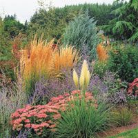Garden design into the fall using in-ground and container gardening combinations.
